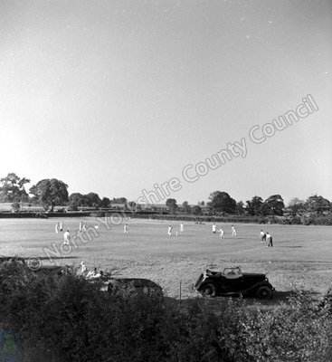 Cricket at Ripley
